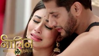 NAAGIN 2 23rd April 2017 Latest Upcoming Twist NAAGIN Season 2 Colorstv