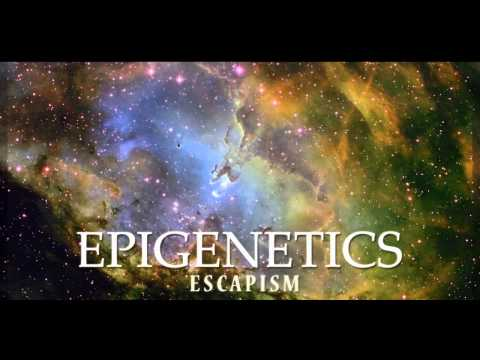 Epigenetics - We Have Arrived
