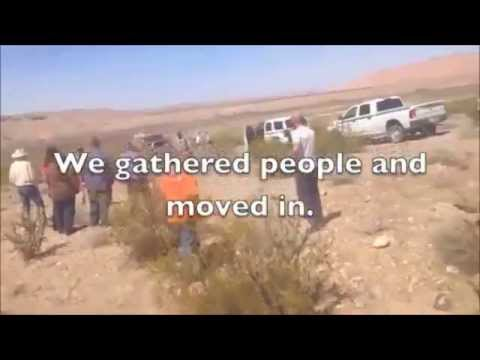 Feds Killing Cattle With Contract Rustlers Cliven Bundy Clark County NV