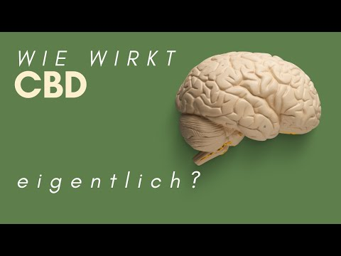 Welches CBD-Öl? WIE wirkt es im Gehirn?