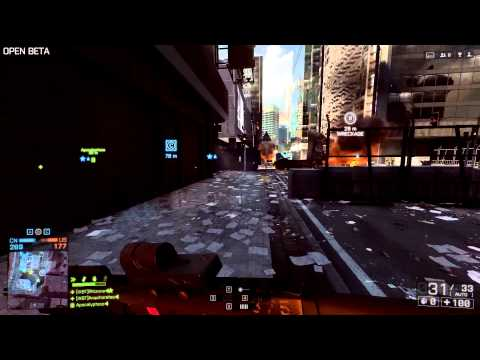 Battlefield 4 ACW-R + VIP dog tag bug