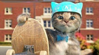 My Favorite Cat Cartoon - Little kitten Pet Care Games For Preschool