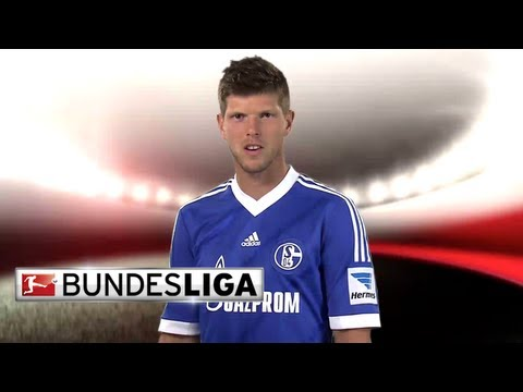 Bundesliga || Klaas-Jan Huntelaar - Top 5 Goals