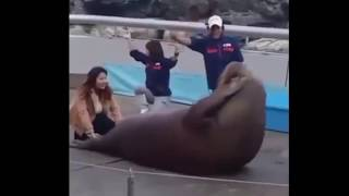 😂🤣😁Funny Animal Video Part 1🐶🐱🙊🐒🦍