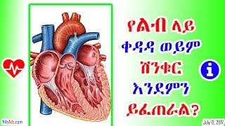 Health: የልብ ላይ ቀዳዳ ወይም ሽንቁር እንደምን ይፈጠራል? What is Heart Break? - VOA