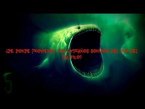 La Criatura Más Extraña Y Aterradora Grabada En El Fondo Del Mar   Monstruos? Kraken? - Misterios
