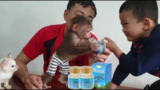 Baby Monkey | Doo Drinks BIRD'S NEST WATER For Kids With His Brother