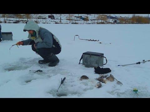 Первые караси этого сезона. Ловля карася зимой на пруду.