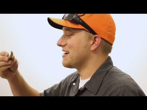 Watch H&S Performance employee Robert Bentley eat a 3 inch tomato worm!