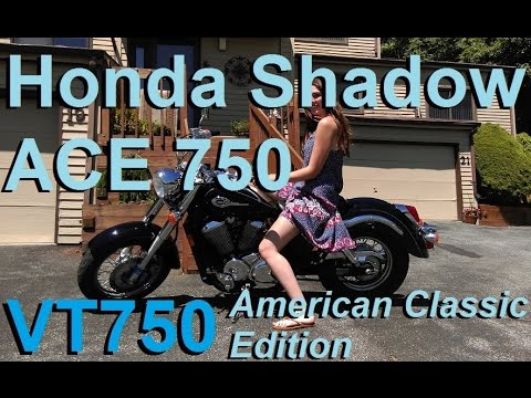 Project Motorcycle: 2002 Honda Shadow ACE 750 (VT750)