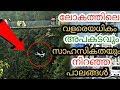 Lagu ലോകത്തിലെ വിചിത്രമായ 5 പാലങ്ങൾ  5 most strangest bridges in the world  Malayalam  QNA