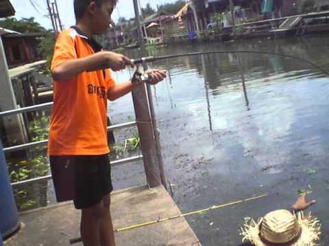 ชุลมุน ปลาผิดคิวคลองดำเนินฯ