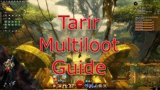 Tarir Multiloot Guide - Guild Wars 2 Gold Making Guide
