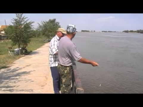 в волжском рыбалка как сходить