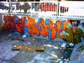 grafitis radok77