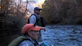 Fly Fish Streamer Express Line Deep