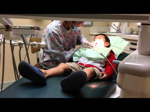 Toddler Dental Teeth Cleaning
