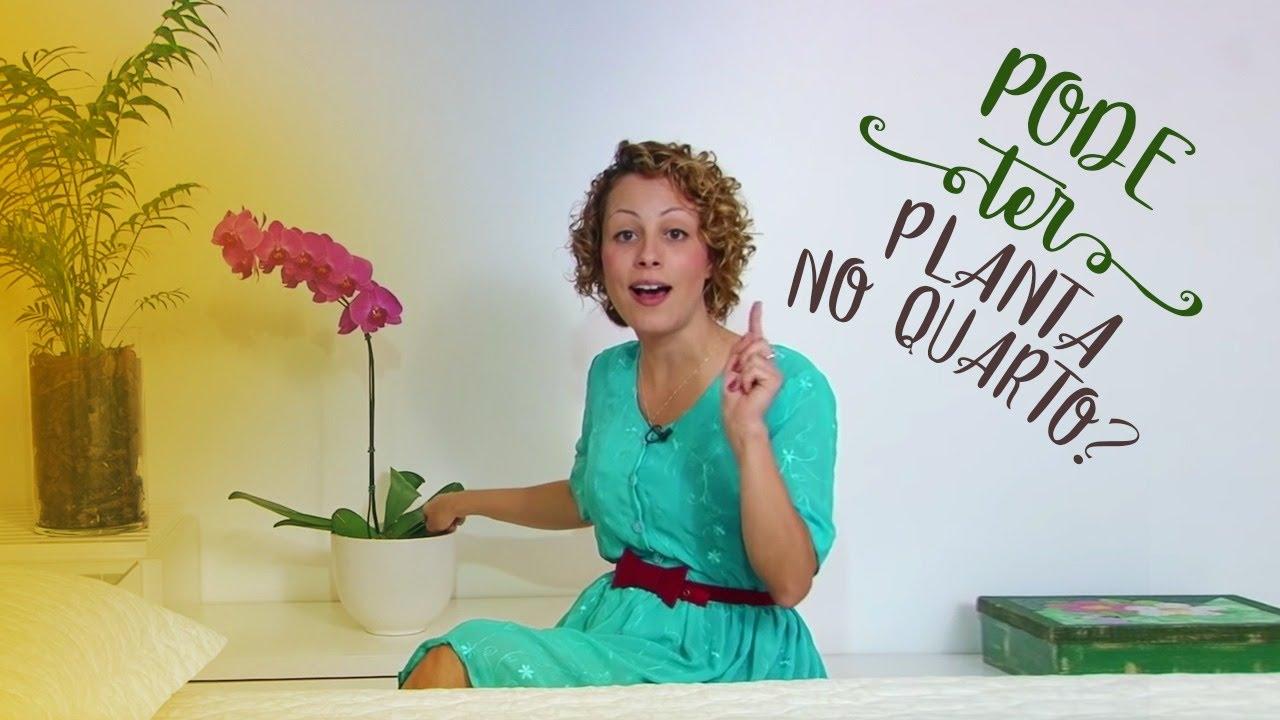 Pode ter planta no quarto youtube for Jardins mangueiral planta 3 quartos