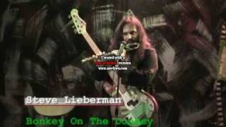 Watch Steve Lieberman Bonkey On The Donkey video