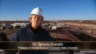 Video Tour of Beef Plant Featuring Temple Grandin