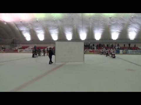 Хоккей 2018