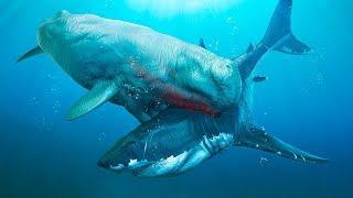 6 Dos Mais Perigosos Inimigos do Megalodonte que Já Existiram