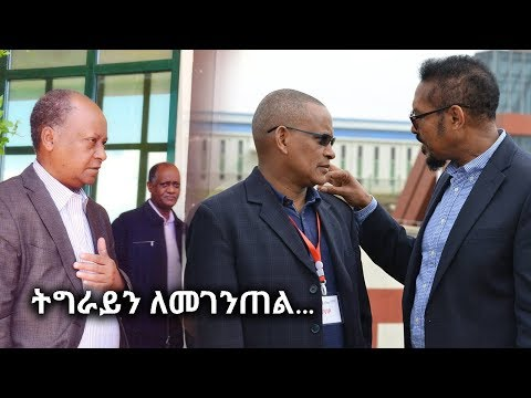 Ethiopia: Hiber Special News -  October 20, 2017