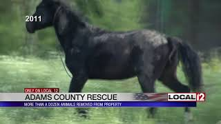 Animals removed from property in Adams Co. after not being fed