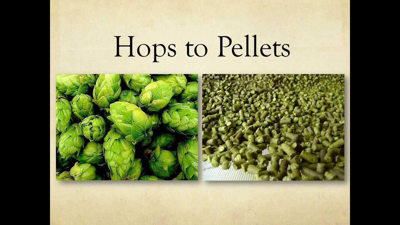 hop pelletizer machine