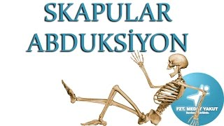 Skapular Abduksiyon ( Scapula Abduction )