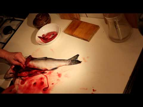Чистка и разделка рыбы (красной) в домашних условиях