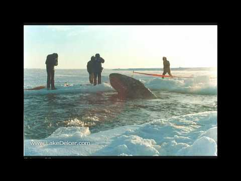 http://www.LakeDeicer.com 877-224-4899 check out Hootkin Inc in Big Miracle Hootkin aka Kasco Marine Kasco deicer de-icer as Hootkin Big Miracle Barrow Alask...
