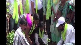 District Collector Haritha Participated Telangana Haritha Haram Program - Warangal  - netivaarthalu.com
