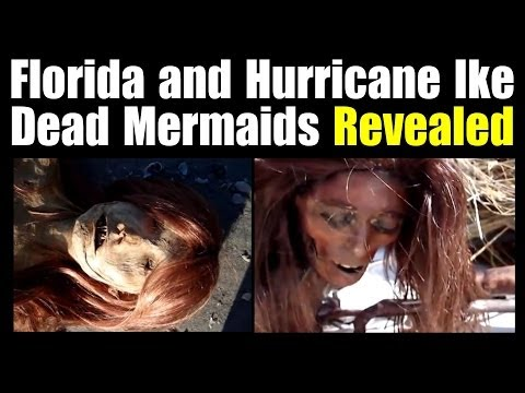 Dead Mermaids: Source Revealed
