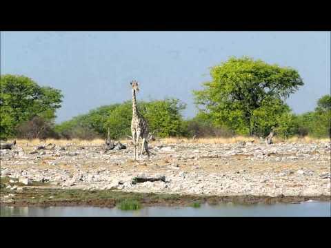 Roadtrip Namibia Nov14