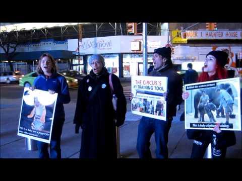 Animals' Battalion Anti-Ringling Circus Protest 02 22 14