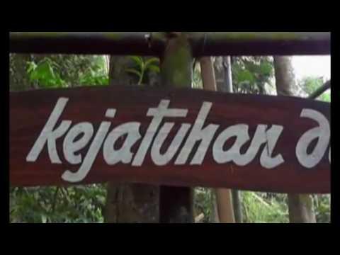 download lagu Taman Botani Sukorambi gratis