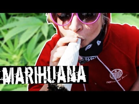 TV jaja - Co sądzą Polacy o marihuanie