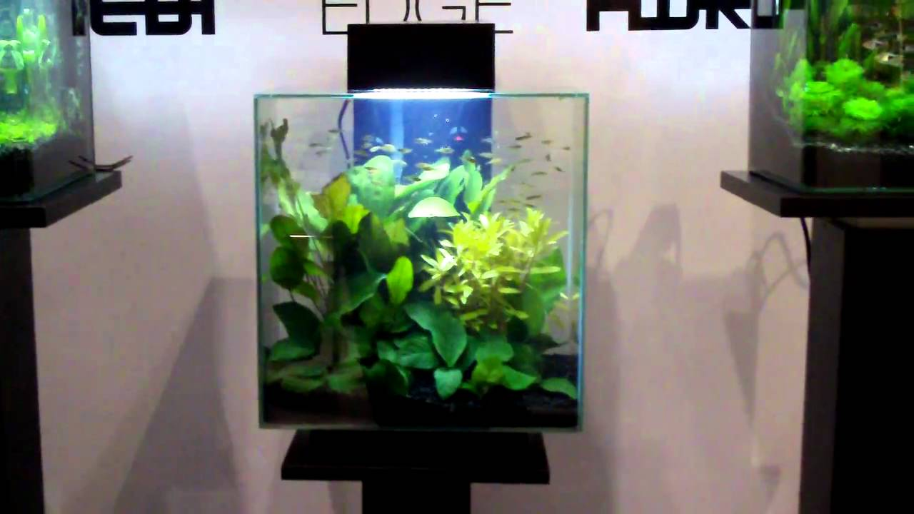 fluval edge 2 12 gallon size new led lights and new colors youtube. Black Bedroom Furniture Sets. Home Design Ideas