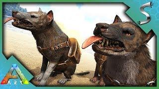HYAENODON TAMING & BREEDING! HOW TO TAME + TAMING PEN! - Ark: Survival Evolved [S3E114]