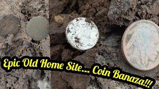 Metal Detecting Score! Silvers, Buffs, Wheaties....Treasure!