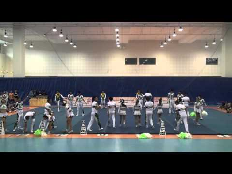 CASNCC 2015 - RP Rexaz Team Green (Republic Polytechnic) - Coed Elite
