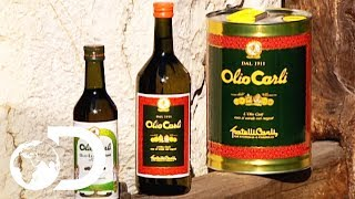 OLIVE OIL | How It's Made