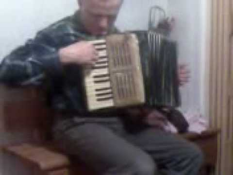 Akordeonista nr 1 w Polsce