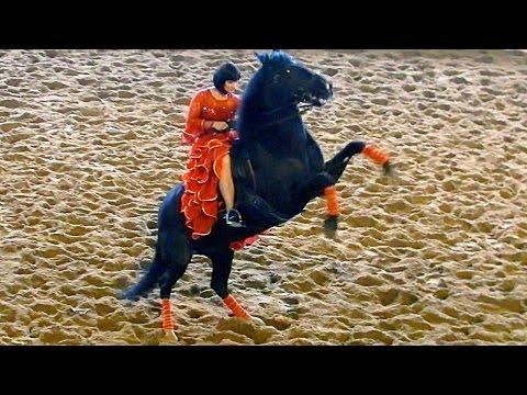 Испанский танец. Красивые лошади видео. Испанский танец верхом на лошади