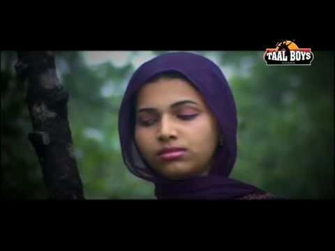 Manassile |new Malayalam Mappilapattu Album Songs 2014 Kannur Shareef Hits video