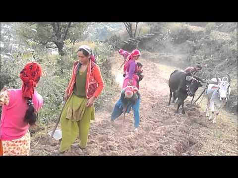 New Garhwali Song 2013 video