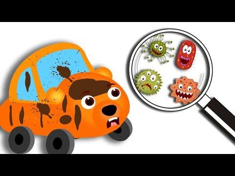 Gummy Bear Cars plays muddy in dirty pond Funny Cartoon For Baby Family Nursery Rhyme