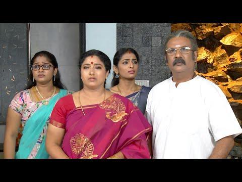 Priyamanaval Episode 307, 27/01/16 thumbnail
