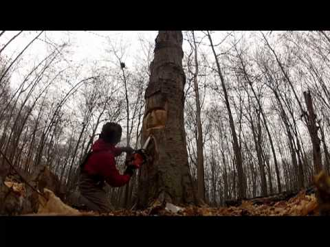 Chainsaw carving ~Tree Spirit 2